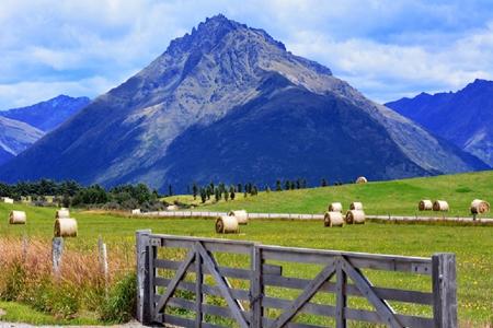新西兰移民政策大变革,这三个方面不得不关注